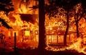 """Cảnh cháy rừng thảm khốc """"nuốt chửng"""" loạt ngôi nhà ở Mỹ"""