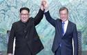 Hàn Quốc bác tin tổ chức Hội nghị thượng đỉnh với Triều Tiên