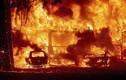 """Cảnh cháy rừng khủng khiếp """"xóa sổ"""" một thị trấn tại Mỹ"""