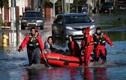 Khốn khổ cuộc sống người dân ở New York trong trận lụt lịch sử