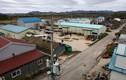"""Cuộc sống """"hai sắc màu"""" ở """"ranh giới"""" DMZ trên bán đảo Triều Tiên"""