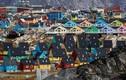 Khám phá cuộc sống ở vùng đất lạnh giá Greenland