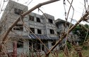 Loạt biệt thự triệu USD bỏ hoang ở KĐT Thiên đường Bảo Sơn