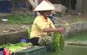 Kinh hãi người dân Hưng Yên rửa rau bằng nước thải đen ngòm