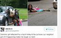 Lo sợ và tức cười xem bé gái 5 tuổi bị ngỗng tấn công