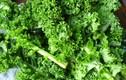 10 loại thực phẩm giải trừ chất độc cho cơ thể quý hơn vàng