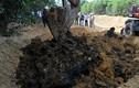 Formosa chôn lấp chất thải có chứa xyanua vượt quá quy định