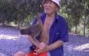 Kỳ lạ chuyện cụ ông 80 tuổi làm bạn với gà