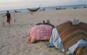 """Trở lại vùng biển """"chết"""" sau sự cố Formosa"""