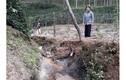 Dân kêu cứu vì cống thoát nước gây thiệt hại vườn cà phê