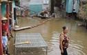 Thanh Hóa: Hàng chục căn nhà ngập sâu sau mưa