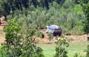 Vợ nghi can vụ thảm sát 4 người ở Lào Cai khai gì?