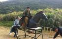 Sự thật buồn cười về cảnh cưỡi ngựa trong phim cổ trang TQ