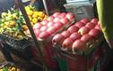 Sự thật đáng lo ngại về táo đỏ Trung Quốc 10.000 đồng/kg