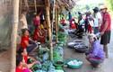 Độc đáo chợ vùng cao bán cào cào, thịt chuột, ếch nhái