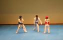 """Màn thi đấu Taekwondo """"bá đạo"""" nhất thế giới"""