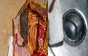 Chi tiết đường đi con chuột chết trong gói bim bim