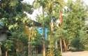 Nhiều phòng nghỉ miễn phí cho khách du lịch Điện Biên