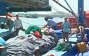 Nghị định phát triển thủy sản chính thức có hiệu lực