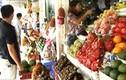 Cảnh báo trái cây Trung Quốc gắn mác nhập khẩu