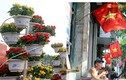 Hà Nội rực rỡ cờ, hoa chào mừng 60 năm giải phóng