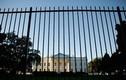 Video kẻ đột nhập Nhà Trắng, đá chó của Mật vụ Mỹ