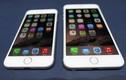 """Nhà sư khoe iPhone 6: """"Chỉ sờ máy lấy lộc cho cửa hàng"""""""