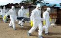 Cận cảnh lò hỏa táng tập thể 700 nạn nhân Ebola