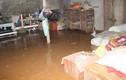 Yên Bái: Vỡ đập chứa bùn thải, bùn tràn ra nhiều lớp