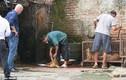 Cảnh cắt tiết chó tại Hà Nội lên trang chủ báo Anh