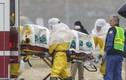 Bác sĩ Sierra Leone nhiễm Ebola đã qua đời tại Mỹ