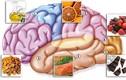Top thực phẩm bổ não giúp phòng bệnh mất trí nhớ