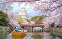 Bí quyết tiết kiệm khi du lịch Nhật Bản có thể bạn chưa biết