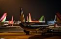 Covid-19: Máy bay Việt chen nhau tại bãi đỗ sân bay Nội Bài