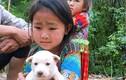 """Em bé vùng cao ôm khư khư chú chó, ai biết lý do cũng """"tan chảy"""""""