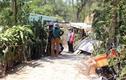 Quảng Nam: Người phụ nữ câm điếc chết bất thường, nghi bị giết