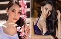 Nhan sắc ngày càng thăng hạng của Hoa hậu Tiểu Vy