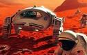 NASA công bố tên năm phi hành gia sắp bay vào không gian