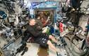 Khám phá cuộc sống khác thường của phi hành gia trên trạm vũ trụ