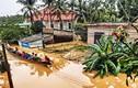 Tại sao phá rừng lại dễ gây ra lũ lụt, sạt lở?