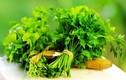 Rau mùi tây chữa bệnh ung thư và tim mạch cực tốt