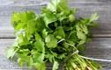 Lợi ích bất ngờ của rau mùi - thứ rau mang hương vị ngày Tết
