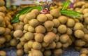 Điểm danh những loại trái cây mùa hè bị tẩm nhiều hóa chất nhất