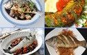 7 món ăn ngon tuyệt đỉnh từ cá vược đặc sản Hải Phòng