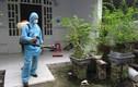 Phun thuốc diệt muỗi sai cách là rước họa vào nhà