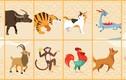 Dự đoán ngày 23/12/2020 cho 12 con giáp: Mùi phát đạt, Dậu gặp họa thị phi