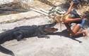 Tận mục công việc săn bắt cá sấu mưu sinh của gái trẻ xinh đẹp