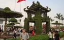 Những làng cây cảnh giá khủng nổi tiếng nhất Việt Nam