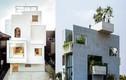Nhà Việt lọt top 11 ngôi nhà mới xây đẹp nhất thế giới