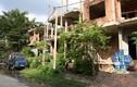 """Cảnh bất ngờ trong dãy biệt thự bỏ hoang giữa khu """"nhà giàu"""" TPHCM"""